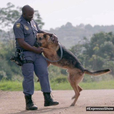 K9-Unit-cared-by-Service-Master-SA-400x400