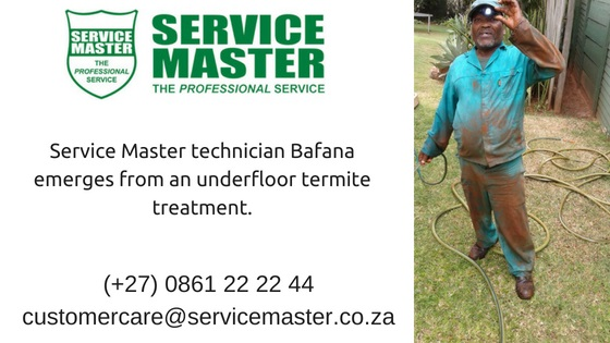 Termite-Treatment-with-Service-Master